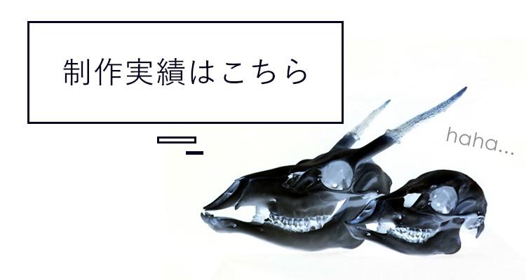 骨格標本・骨作品 制作実績